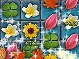 Flowery Vale Bonus Round