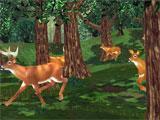 Big Buck Hunter hunting deer