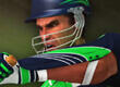 Cricket Batter Challenge preview image