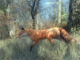 theHunter wildlife
