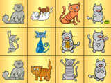 Cat Conection