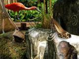 Zulu's Zoo Rainforest