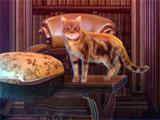 Fierce Tales: Feline Sight Cabin