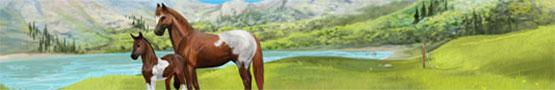 Horse Games Online - Why Text Based Horse Games Are Fun?