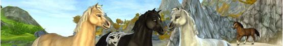 Horse Games Online - My Favorite Horse Games