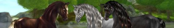 Gry Konne Online - Learning More About Horses in Horse Sims