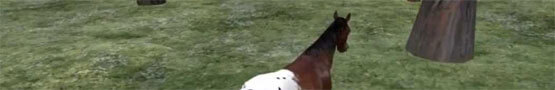 Jogos de Cavalos Online - Horse Riding Simulation in Second Life