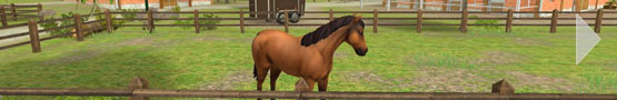 Horse Games Online - Our Favorite Horse Jumping Games on Mobile