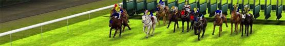 Jogos de Cavalos Online - How Often Should You Train Your Horse?