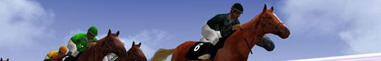 The Challenges of Horse Games preview image