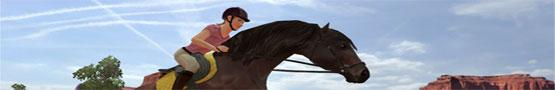 Virtual Horse Riding Games preview image