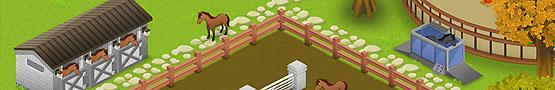 Horse Games Online - Learning More About Horse Games: Facilities