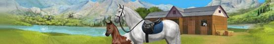 Jogos de Cavalos Online - The Fun Things You Can Do in Howrse