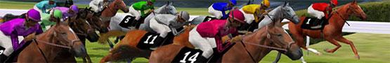 Online Paarden games - Types of Horse Races