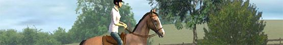 Best Horse Games on Android preview image