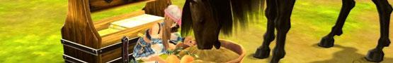 Horse Games Online - Horses and Treats
