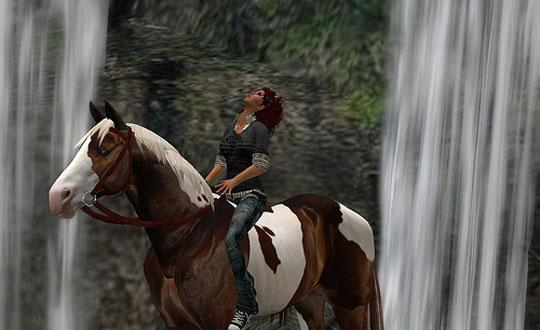 Second Life: Pinto from Branagh's Barn
