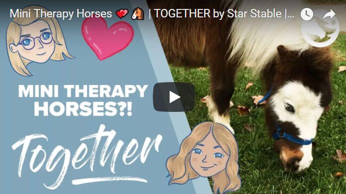 TOGETHER by Star Stable: Mini Therapy Horses