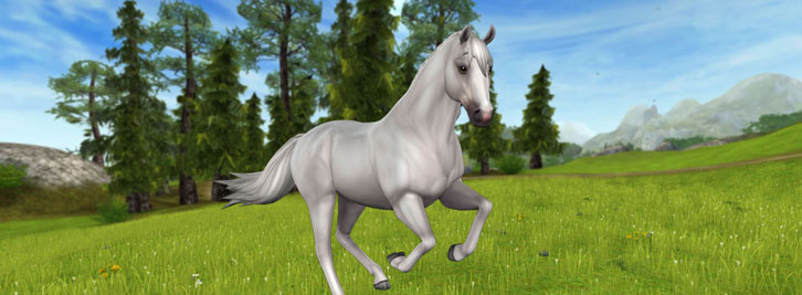 Star Stable Rolls Out New Starter Horses