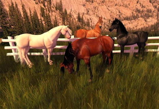 Wonderful Horses in Second Life