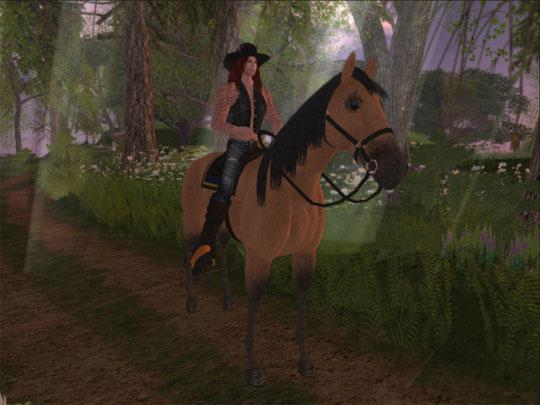 Be a Cowboy in Second Life