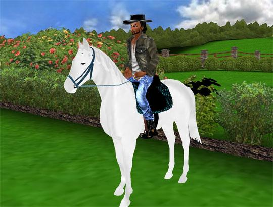 Beautiful Horse & Rider in IMVU