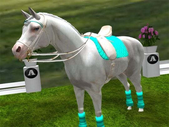Amazing Dressage Horse in Second Life - Play Horse Games