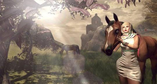 Fabulous Horses in Second Life