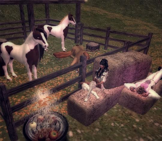 Social Riding in Second Life