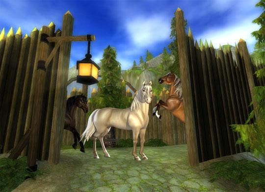 The Morgan Horses are Back in Star Stable