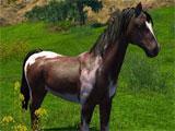 ArcheAge: Dappled Lilyut Horse