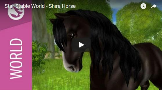 Learn More About Shire Horses with the Star Stable Team