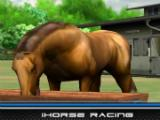 Raising your horse in iHorse Racing