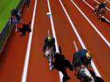 Making a turn in Horse Racing 3D 2015 Free