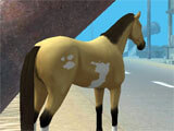 Hill Cliff Horse gameplay