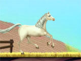 Princess Horse Caring 3 exciting mini-game