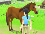 My Riding Stables: Your Horse Breeding: Your ranch