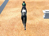 Racing Horse Champion 3D Your Horse