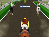 Horse Racing Track Farm Riding racing