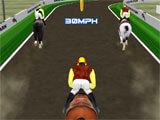 Horse Racing Track Farm Riding racing
