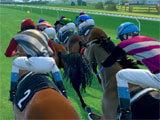 Rival Stars Horse Racingintense race