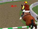 Horse Racing World Championship jumping over hurdles