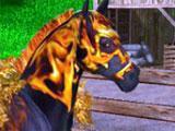 A Virtual Horse Horse Market