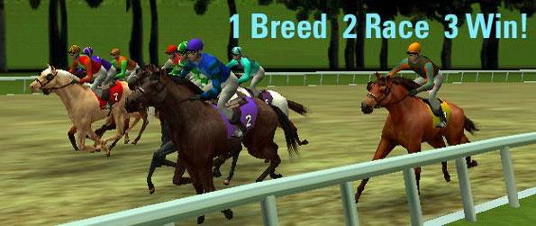 NewTurf - Enter a fun horse racing game where you can win real money!