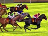 iHorse Racing 2 Exciting Races