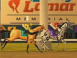 Race Highlights in Derby Quest