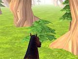 Horse Haven Adventure 3D running around