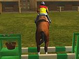 Horse Show Jump Simulator 3D - Going For a Jump