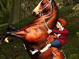 Halting in Horse Ride 3D