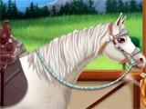 Princess Horse Caring customizing horse